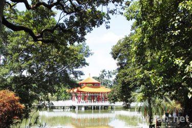 台南の森、でも暑かった夏の台南公園